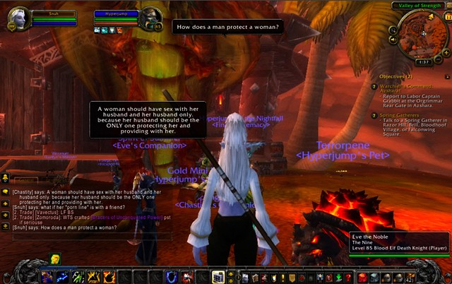 Asking the World of Warcraft community (or one of them) to provide me with their definitions of feminism and feminists.