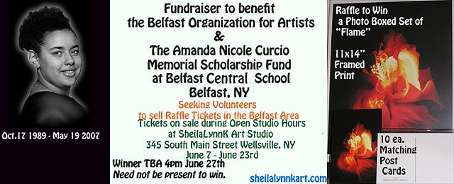 Fundraiser in Memory of Amanda