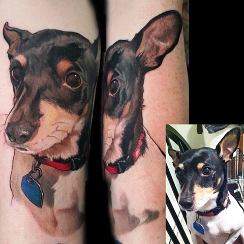 memorial dog portrait by female tattoo artist Tiffany Garcia