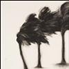 Storm Palm No. 12