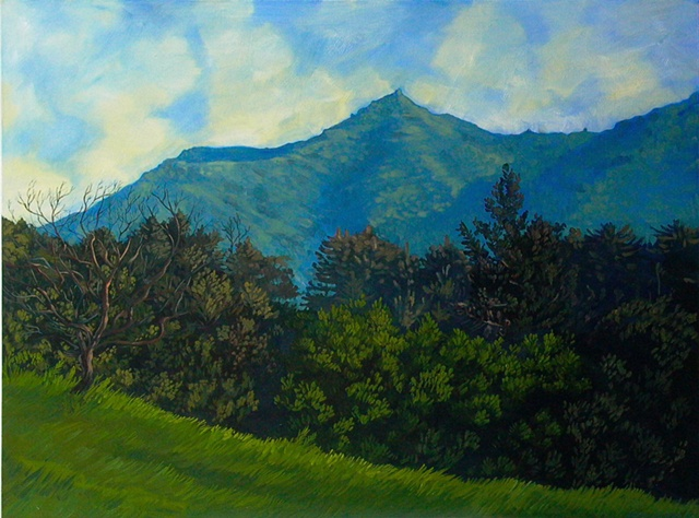 """Mt. Tam with Tree"""