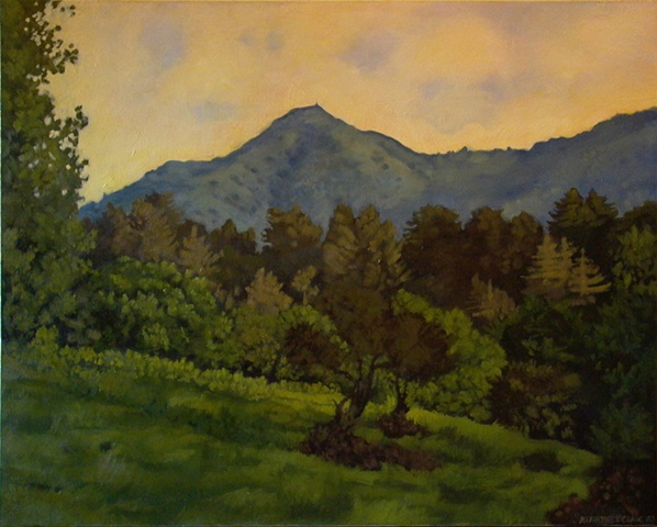 """View of Mt. Tamalpais"""