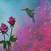 Aiva Rose
