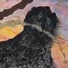 Black Mountain and Bird Shadow