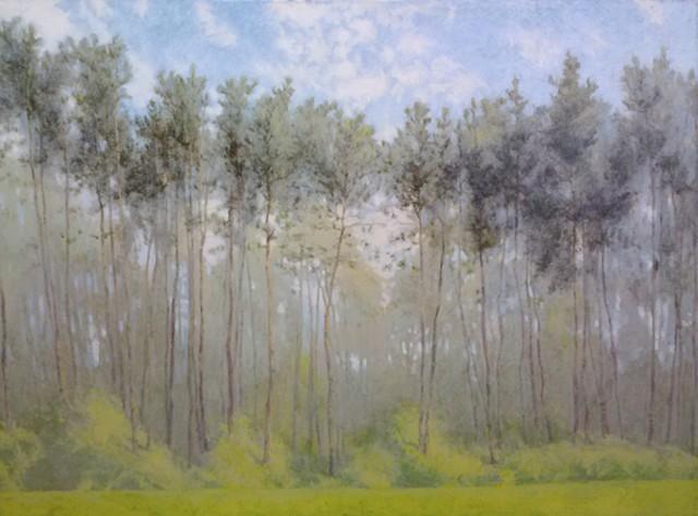 Houghton Trees (Grand)