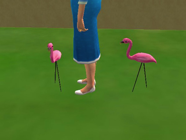 Between the Pink Flamingos