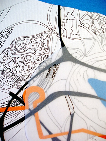 Topography of Jellyfish Point (detail)