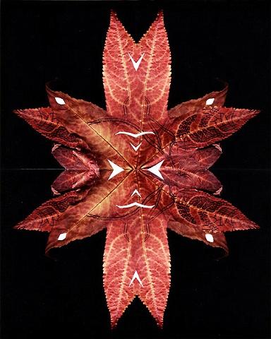 Leaflake