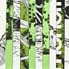 Dialogue: Portland, Collage 7