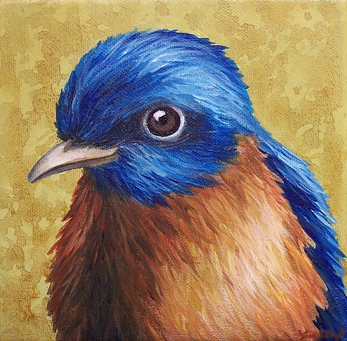 Bluebird portrait #2