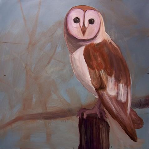 Barn Owl #2 (perched)  (step 5/9)