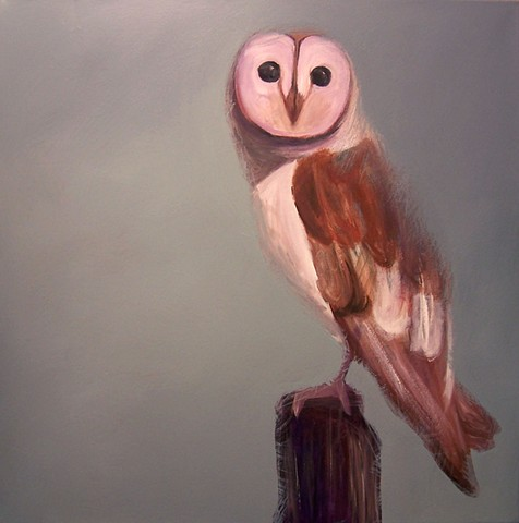 Barn Owl #2 (perched)  (step 6/9)