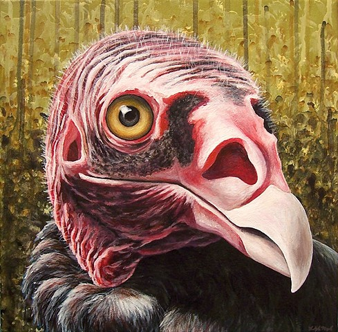 Turkey Vulture portrait (step 10/ finished)