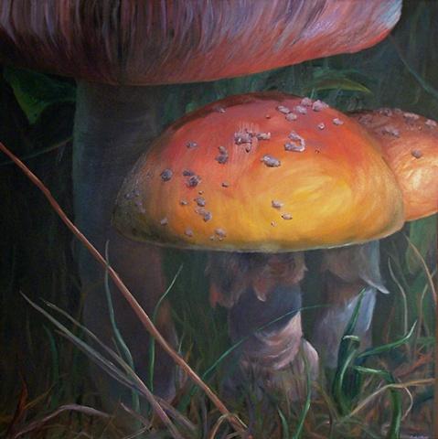 Moral Fiber, (Wild Mushrooms #1)