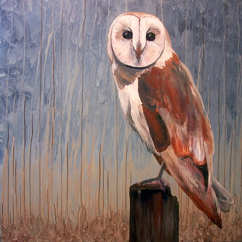 Barn Owl #2 (perched)  (step 8/9)