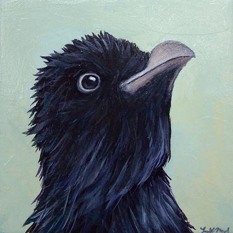 Raven Portrait #1