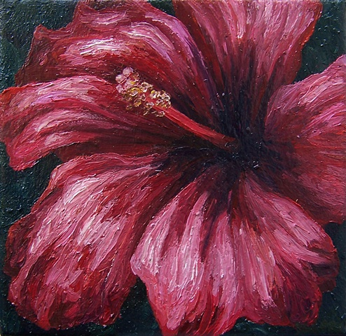 Red Hibiscus #2