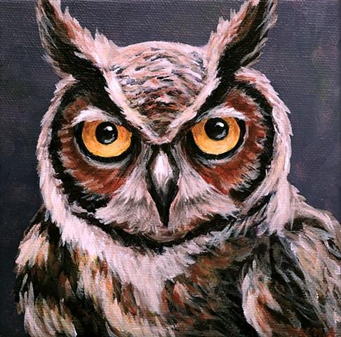 Great-Horned Owl portrait