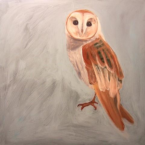 Barn Owl #2 (perched)  (step 3/9)