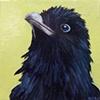 Raven Portrait #2