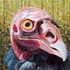 Turkey Vulture portrait (step 7)
