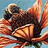 Zinnia and Bumblebee