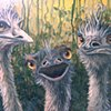 Three Emus (step 8)