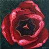 Red Tulip #3