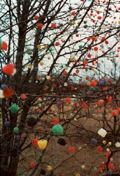 Gumdrop Trees in Skokie