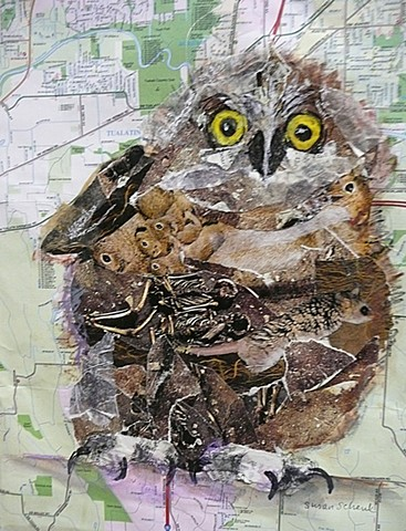 owlette collaged from pictures of owl prey