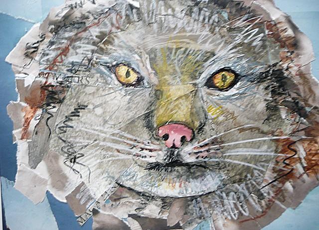 Snowcat portrait in collage