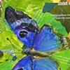 Butterfly Blue Metal Mark
