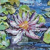 waterlily purple