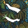 Velvet Worm - Color
