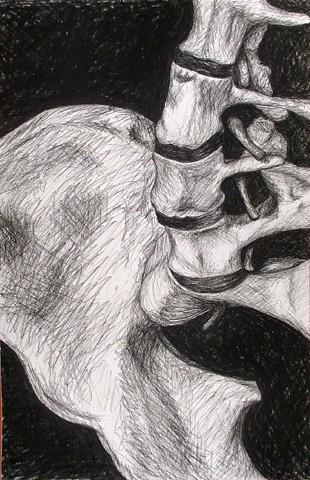 Skeleton_Composition_7