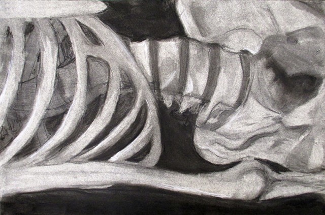 Skeleton_Composition_6