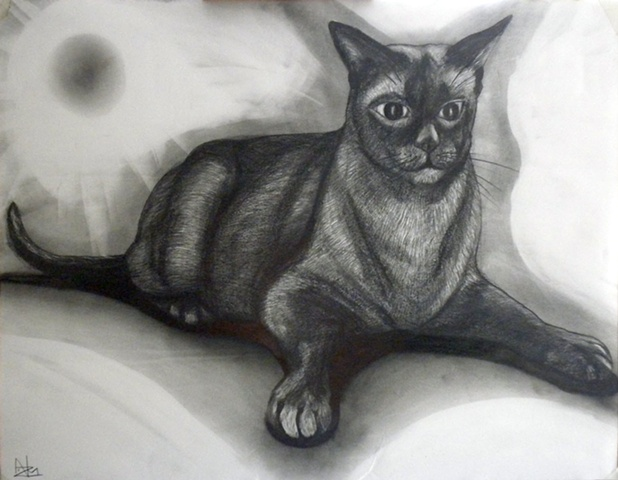 ANIMAL ART, FELINES, CATS