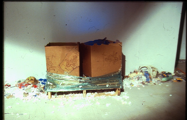 Monkey Act: Jeffery Driskill & Paul W. Perkins Galley X Documentation of Secret 2040 (boxes that house video monitors)