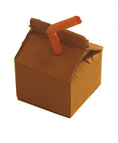 3 sample milk carton