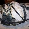 Jeffery Driskill Seven Billionth Baby Latex coats in mold