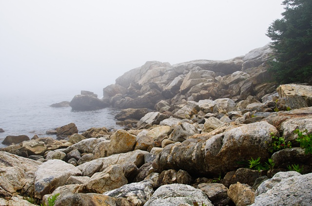 Maine Coast Fog
