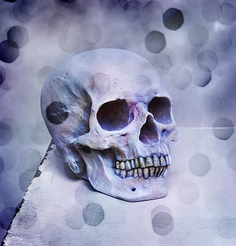 photograph of glittery skull by christopher andres