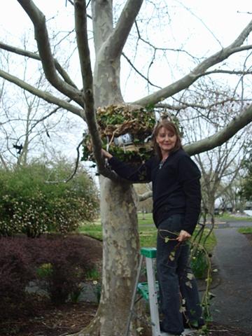 Pam Roger's installing her Nest
