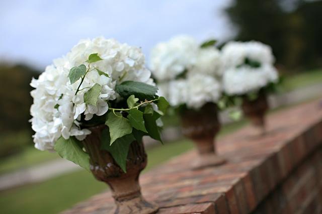 White Hydrangeas in Rustic Urns