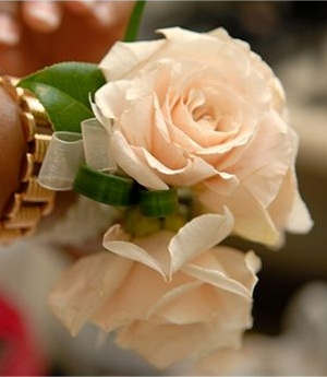 Daniel Menacher Photography Double champagne-colored rose wrist corsage, accented with camelia leaves and lily grass.