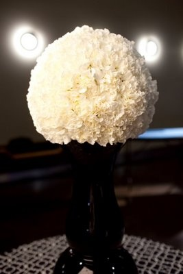 "White carnation pomander balanced on a 20"" contemporary black vase.  Modern Design - Carnation Pomander"