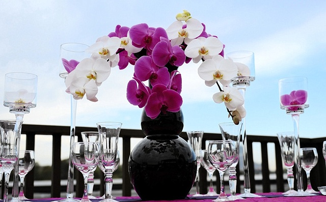 WilGrant Weddings Modern Phaelanopsis Orchid Design White and purple phaelanopsis orchids in a black, modern vase.  Arrangement flanked by clear, glass goblets containing single white and purple phalaenopsis blooms.