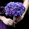 Purple Hydrangea Bridesmaid Posey