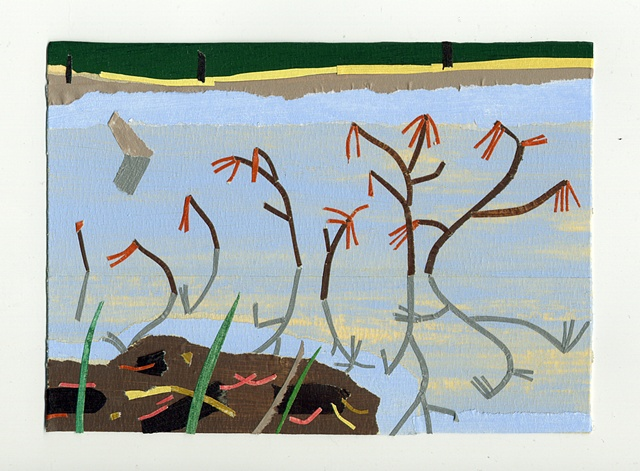 spring grove pond, rhode island, pine needles, blade wynne
