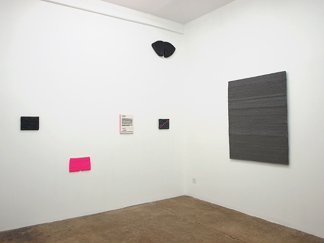 Installation view @ Julius Caesar Gallery (Chicago)